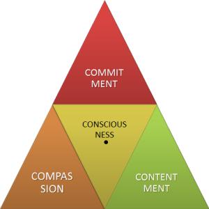 3 Cs of Conscious Culture
